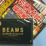 MonoMax-beams