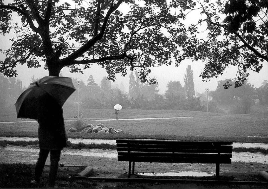 雨降りにはレインカバー